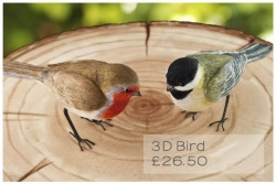 '3D Bird' Silicone Mould